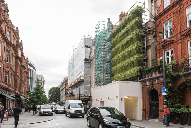 <p>The Living Wall is made by Green Fortune, a Swedish company that specializes in covering vertical surfaces with plants.</p>