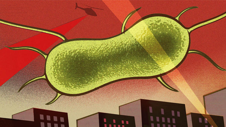 <p><strong><a href=&quot;http://www.fastcompany.com/3056445/can-we-save-ourselves-from-the-end-of-antibiotics-or-have-the-superbugs-already-won&quot; target=&quot;_self&quot;>Can We Save Ourselves From The End Of Antibiotics--Or Have The Superbugs Already Won?</a></strong></p>