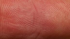 Can The IPhone 5S Fingerprint Sensor Lead To Identity Theft?